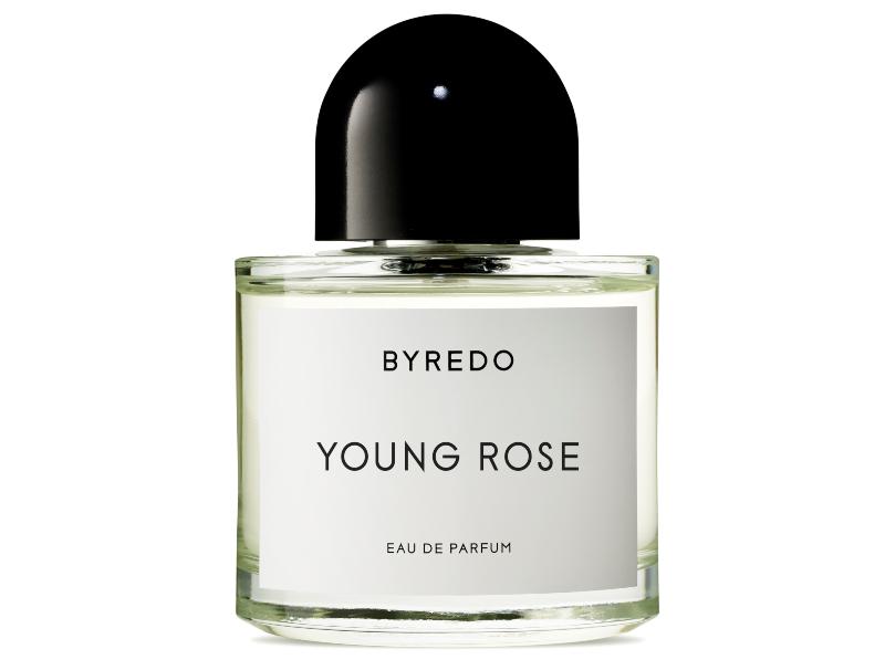 210910145702 Young Rose Packshot 1